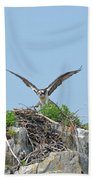 Osprey Landing On A Nest Beach Towel