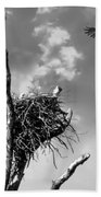 Osprey Nest Beach Towel