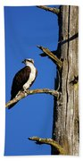 Osprey Nest Guard - 001 Beach Towel