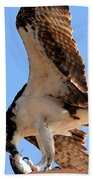 Osprey's Catch Beach Towel