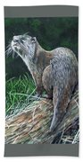 Otter On Branch Beach Towel