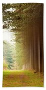 Out Of Woods Beach Towel