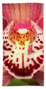Outstanding Orchid Beach Towel