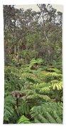 Overlooking The Rainforest Beach Towel