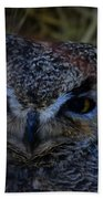 Owl Beach Towel