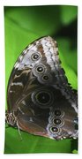 Owl Butterfly On A Cluster Of Green Leaves Beach Sheet