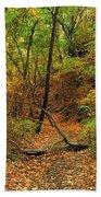 Owl Canyon In Autumn 2 Beach Towel