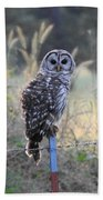 Owl Cherish This Moment Forever Beach Sheet