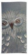 Owl In The Blue Beach Towel by Ginny Youngblood