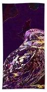 Owl Little Owl Bird Animal  Beach Towel