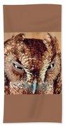 Owl Who? -brown Owl Beach Towel