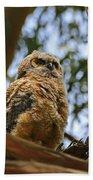 Owlet Lookout Beach Towel