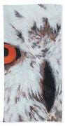 Owlish Eyes Beach Towel