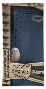 Owls And Trestles Beach Towel