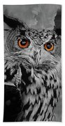 Owls Eye Beach Towel