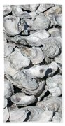 Oyster Shells On Cumberland Island Beach Towel