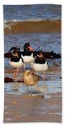 Oystercatchers Beach Towel