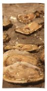 Oysters Beach Towel