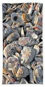 Oysters Shells Beach Towel