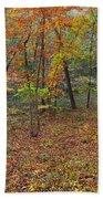 Ozark Forest In Fall 1 Beach Towel