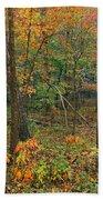 Ozark Forest In Fall 2 Beach Towel