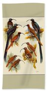 pa FB WilliamTCooper LesserBirdsOfParadise Penny Olsen Beach Towel