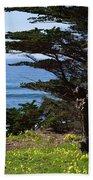 Pacific Beauty Beach Towel