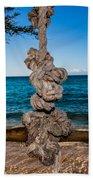 Pacific Rope Swing Beach Towel