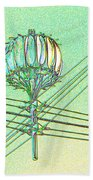 Pacific Science Center Lamp Beach Towel