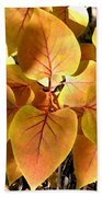 Painted Autumn Lilac Beach Towel