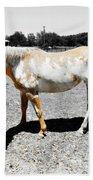 Painted Horse II Beach Towel
