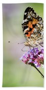 Painted Lady Beach Towel