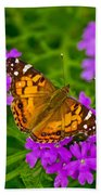 Painted Lady On Purple Verbena Beach Towel