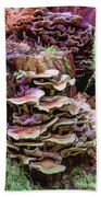 Painted Mushrooms Beach Towel