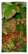 Painted Plants Beach Sheet