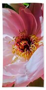 Painted Velvet Petals Beach Towel