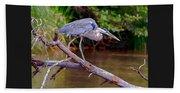 Painting Blue Heron Oak Creek Beach Towel