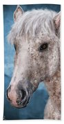 Painting Of A Brindle Horse With White Coat Beach Towel
