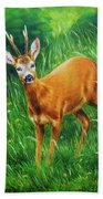 painting of young deer in wild landscape with high grass. Eye contact. Beach Towel