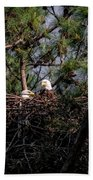 Pair Of Bald Eagles In Nest Beach Towel