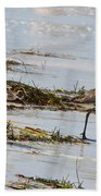 Pair Of Willets Beach Towel