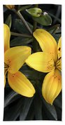 Pair Of Yellow Lilies Beach Sheet
