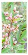 Pale Powder Pink Plant Beach Sheet