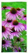 Pale Purple Coneflowers Beach Towel