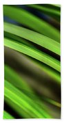 Palm Abstract By Kaye Menner Beach Towel