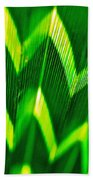 Palm Abstract Beach Towel