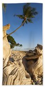 Palm And Driftwood Beach Towel