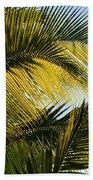 Palm Detail Beach Towel
