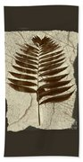 Palm Fossil Sandstone  Beach Towel