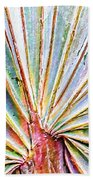 Palm Frond Lines Beach Towel